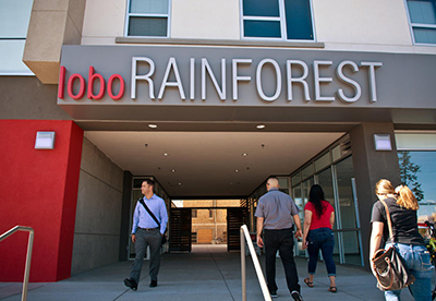 Sandia to Put Down Roots at Lobo Rainforest Building